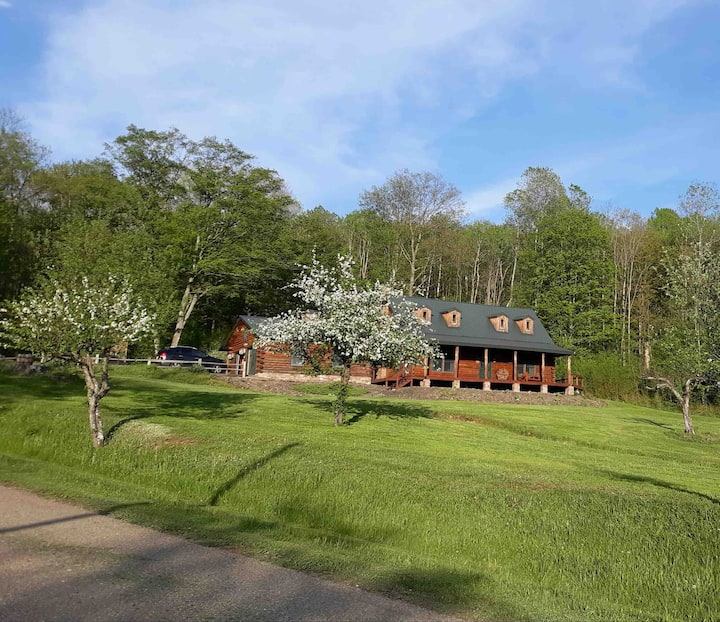 log home in secluded area with all the amenities