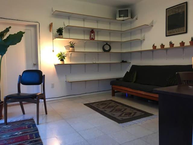 Classic 1940's apartment located at roma-condesa