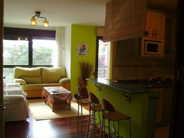 Apartment in the park of La Penilla