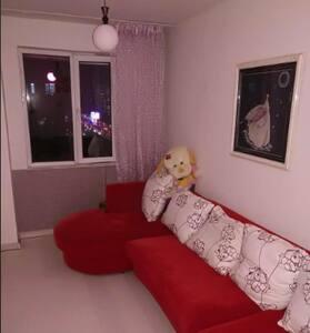 温馨有爱 家庭式公寓 - Benxi