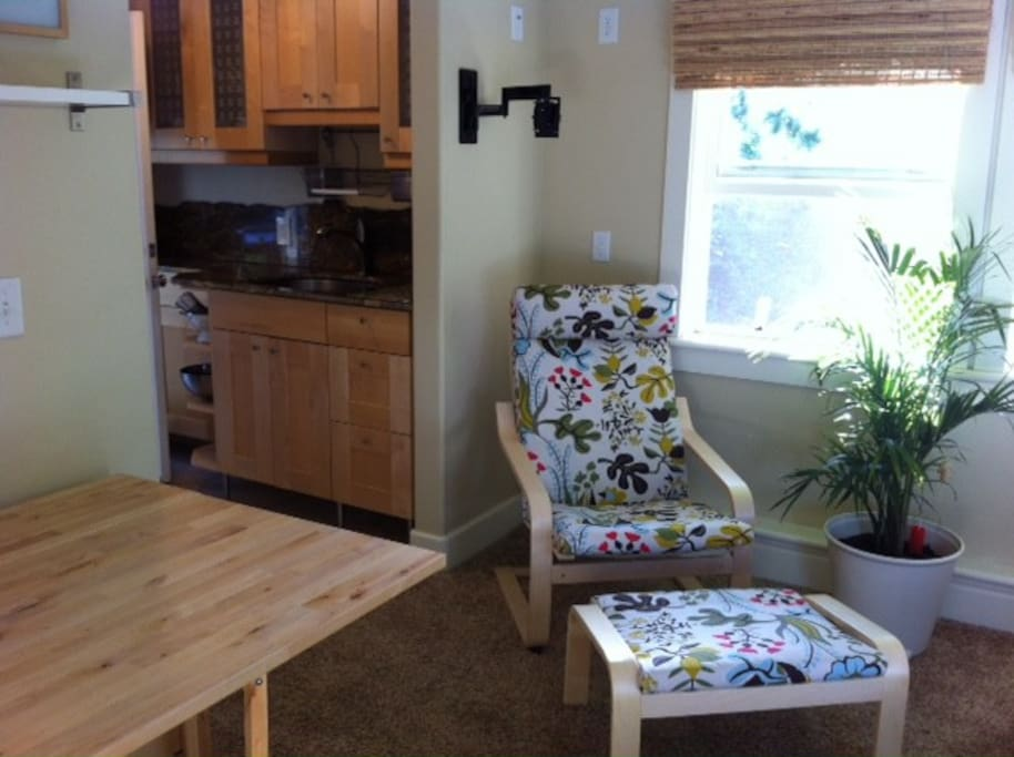 Studio with beautiful kitchen with granite countertops, refrigerator, microwave, and a single induction electric stove top