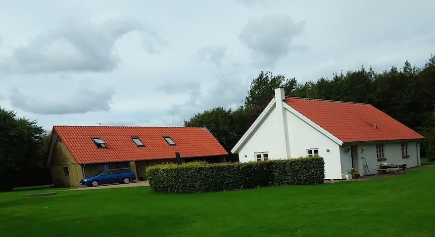 Ro og idyl på heden ved Grønhøj.