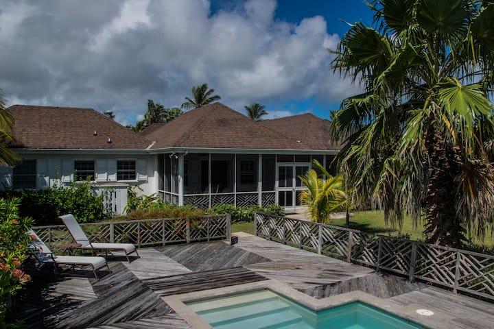 Nevis Palm - beach chic