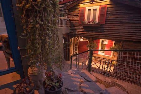 Meena Bagh Shimla. A Himachali Home in Shimla. - Shimla