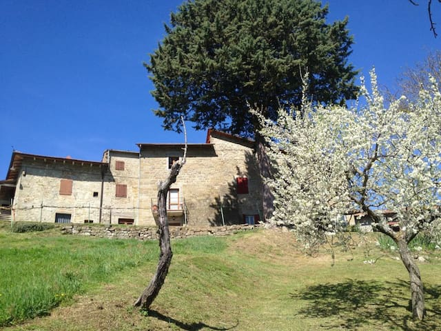 Casadino, 1714 farmhouse. - Stia - House