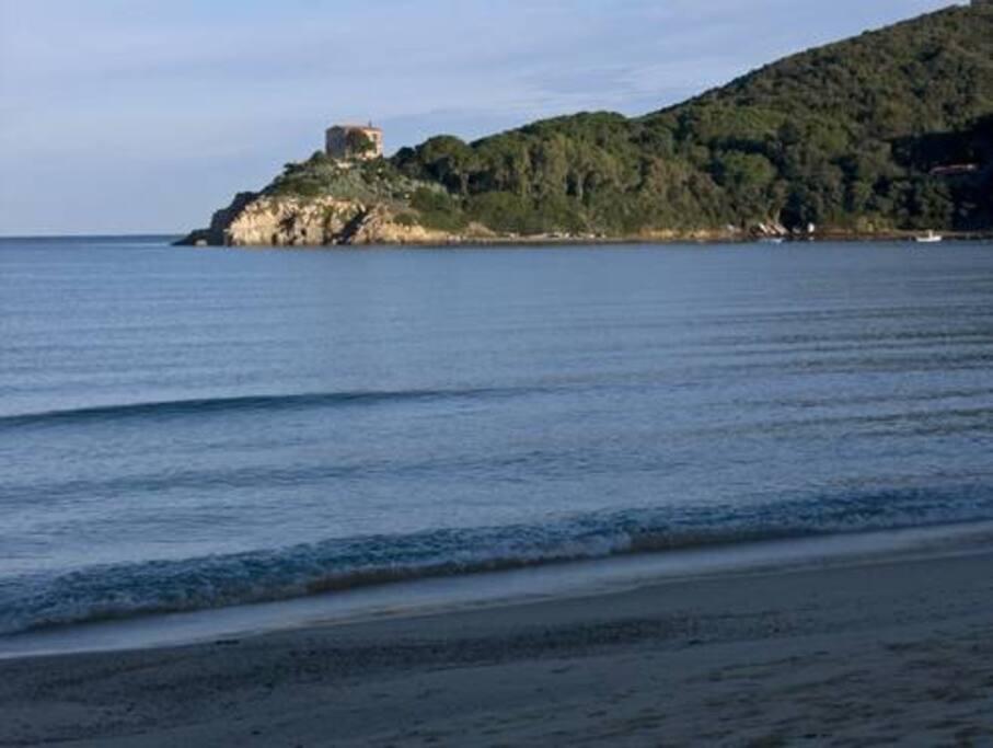 Golfo di Procchio