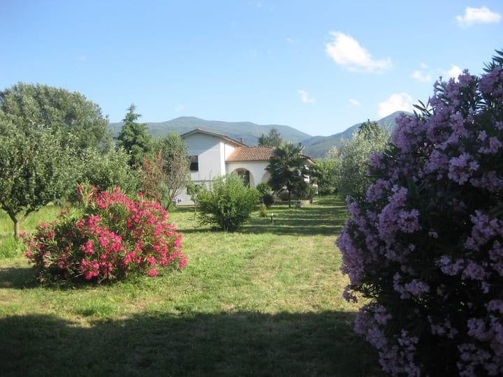 Beautiful Country house near Lucca