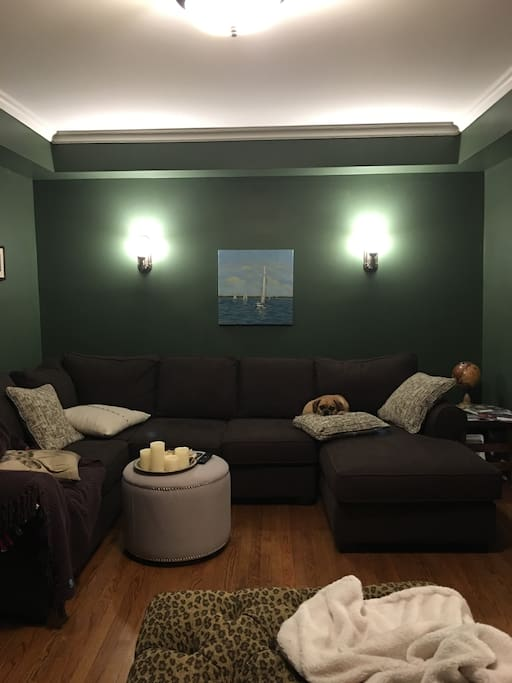 Living room. .. and dog (Carlos).