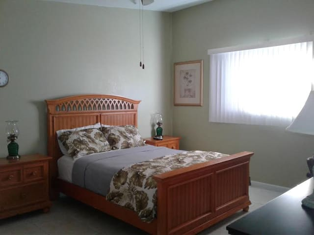 Charming, naturally well-lit guest home! - Tarpon Springs - Appartement