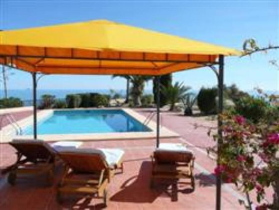 Chalet con piscina en primera l nea casas en alquiler en for Alquiler chalet piscina privada comunidad valenciana