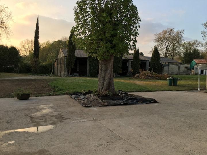 Maison rénové avec immense terrain