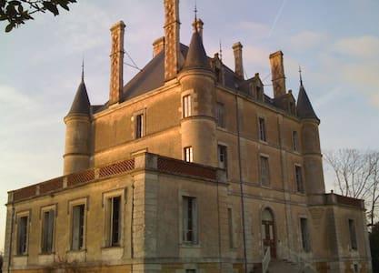 Chateau De Puybelliard - Chantonnay - Schloss