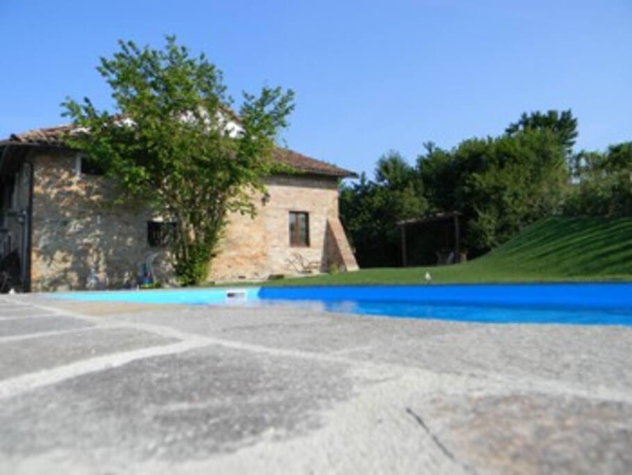 Der Pool und der Garten