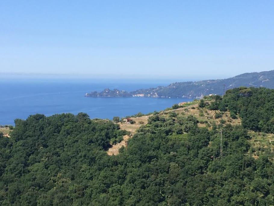 Vista sul promontorio di Portofino