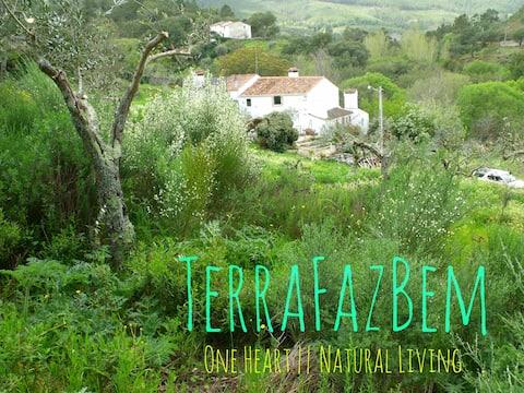 TerraFazBem || One Heart - Natural Living