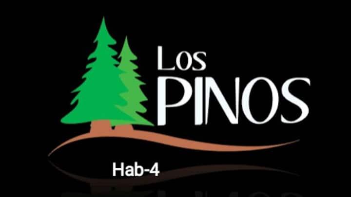 Habitación Privada #4 Hostal Los Pinos