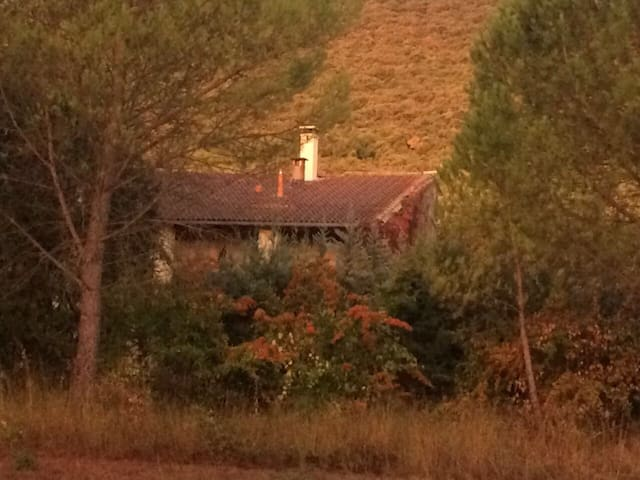 Romantic House within the picturesque Cevennes
