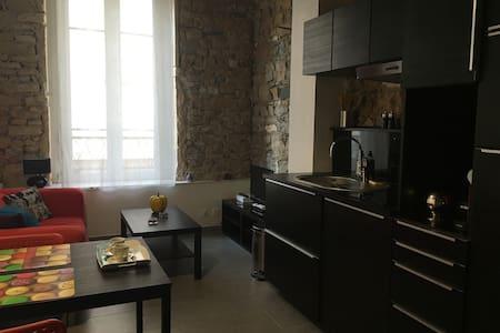 Magnifique studio  avec  air conditionnée - Lyon - Wohnung
