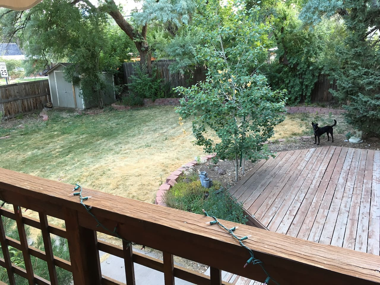 Big back yard with plenty of deck space to hang out.