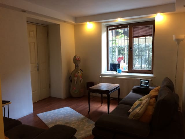 cozy home / great location - İstanbul - Ev