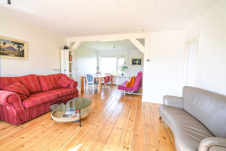 Light and Spacious Holiday Cottage Amsterdam Noord