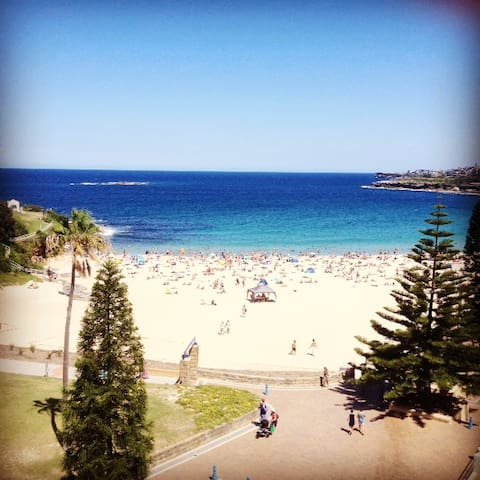 Beach front room available in unit! - Coogee - Apartment