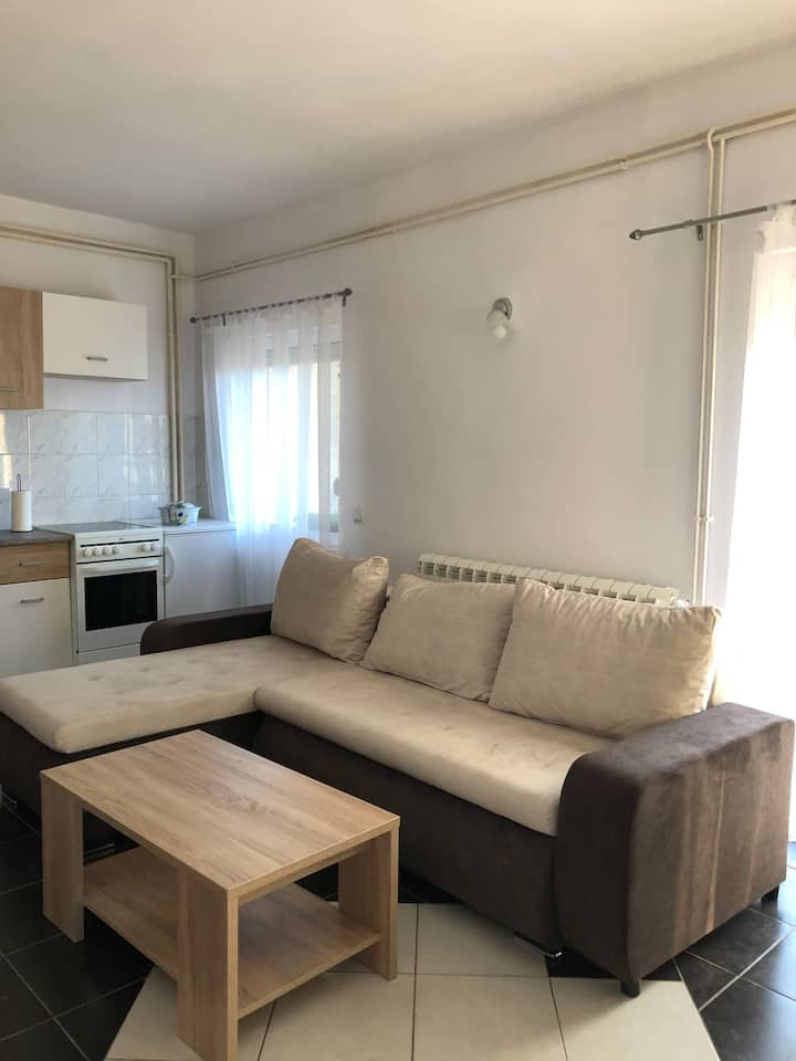 Apartment Dedinje Belgrade