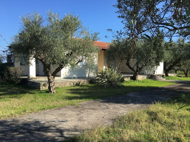 Private beach-olive grove and villa at Petalidi - Petalidi
