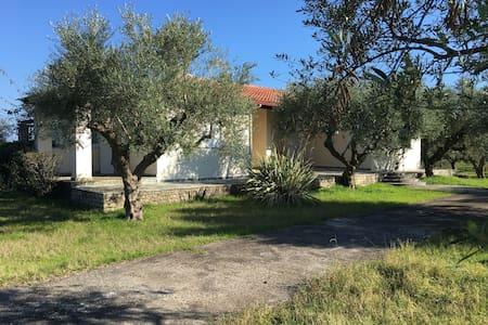 Private beach-olive grove and villa at Petalidi - Petalidi - บ้าน