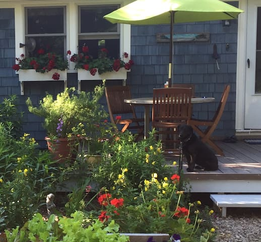 Private 1BD in West Barnstable