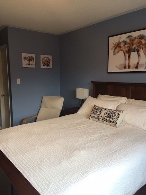 Large Beautiful Room W Private Bath Wifi Parking Houses For Rent In Mississauga Ontario Canada