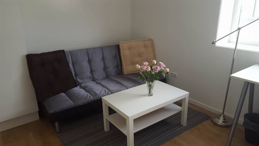 Light and vibrant private room in welcoming home! - Aarhus - Appartement