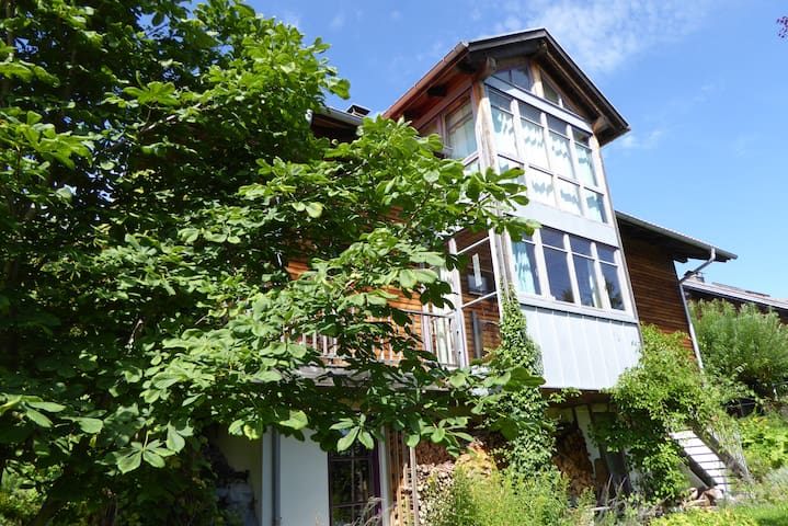 Woodhouse with nice mountain view! - Oy-Mittelberg - House