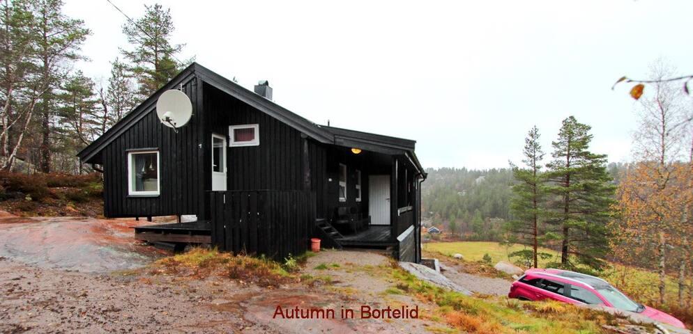 588, Koselig liten hytte på Bortelid