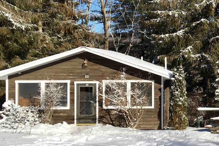 Fireside Cabin (5A) in Pine Hill 3min to Belleayre