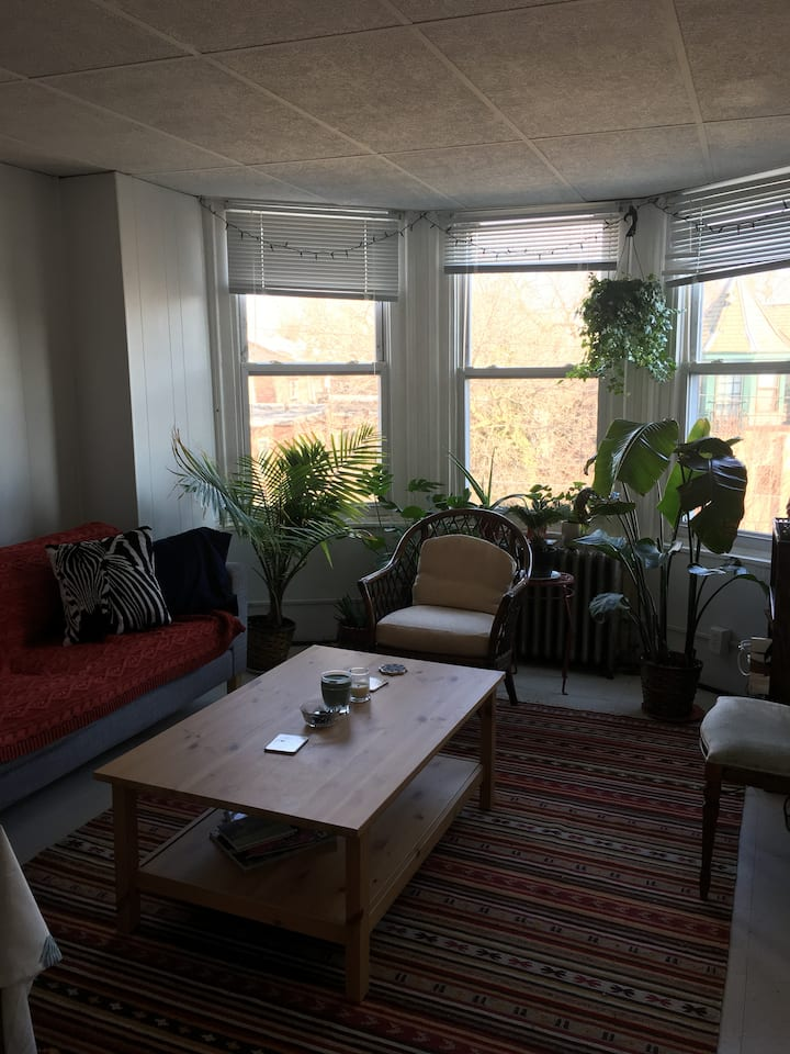 Cozy Apartment in West Philly