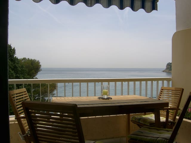 Le paradis bleu face à la mer