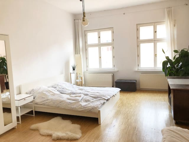 Super big Central Apartment in Berlin Mitte