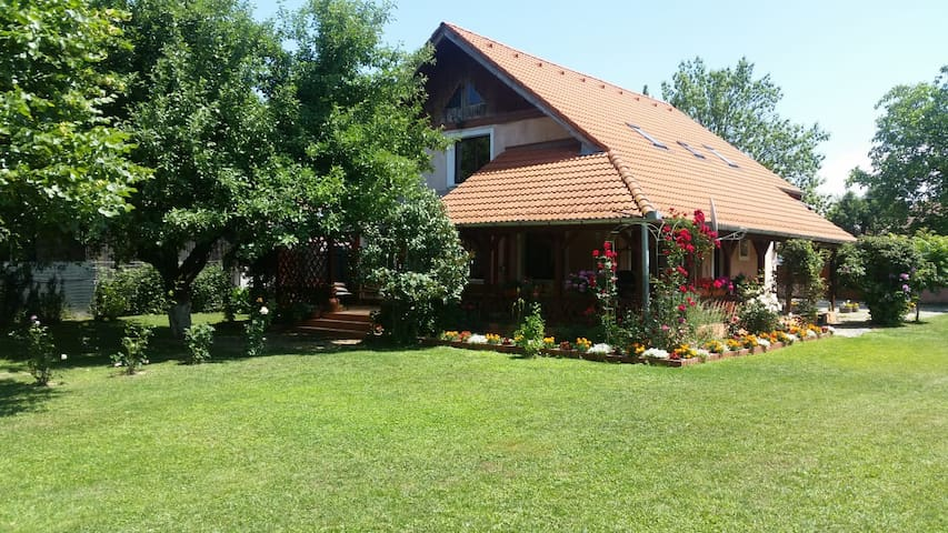 Welcoming hosts & big house in Transylvania