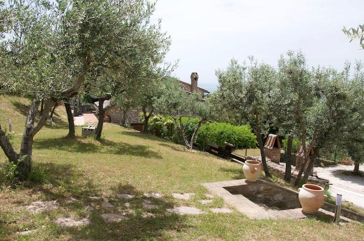 Casa Vacanza L'olivo al Borghettaccio di Assisi