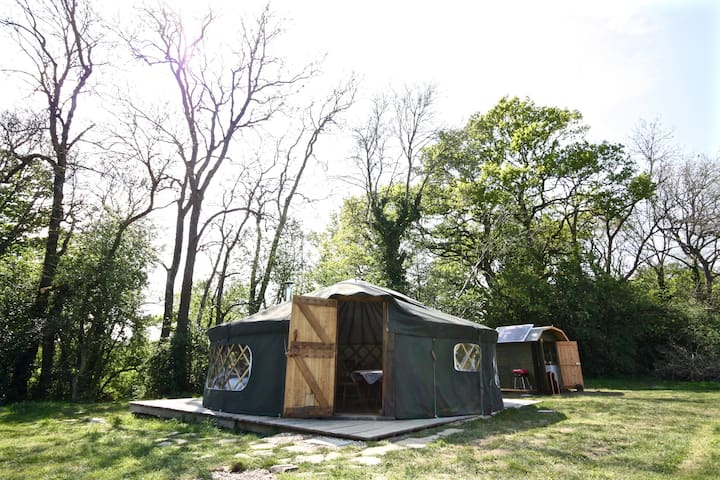 'Willow' Yurt - Fernhurst