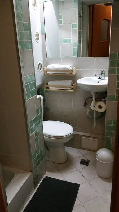 Bathroom - toilet and sink together with walk-in shower