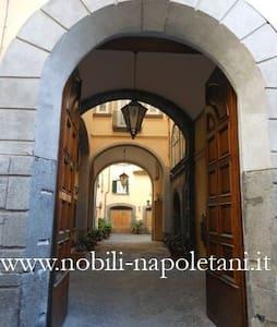 Palazzo Rota Holidays - Nàpols - Pis