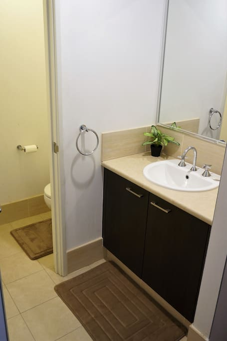Private wash basin and toilet