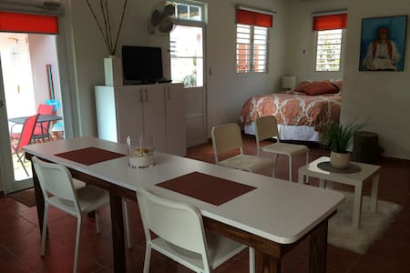 Garden Studio Apt. in Quebradillas! - Appartement