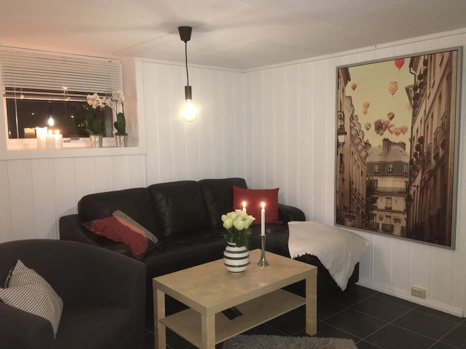 Sofagruppe i stue med dobbel sovesofa