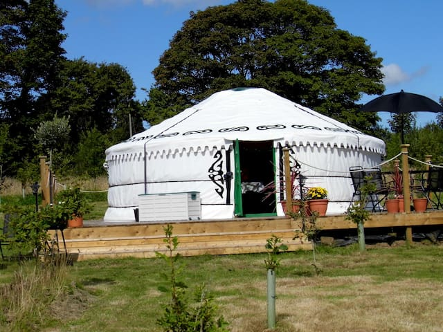 Mongolian Yurt set in secluded 2 acre wood
