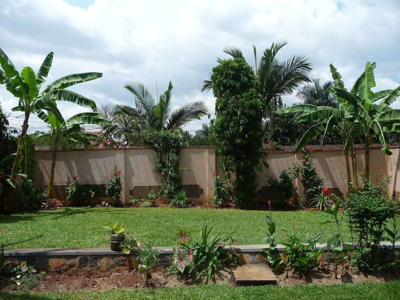 Our beautiful garden with Banana Trees, Papyrus and Hibiscus bushes invites to read a book, watch birds or simply relax. Many birds like Black and White Casqued Hornbills, Grey parrots, Sunbirds and Hadada Ibis come and visit regularly.