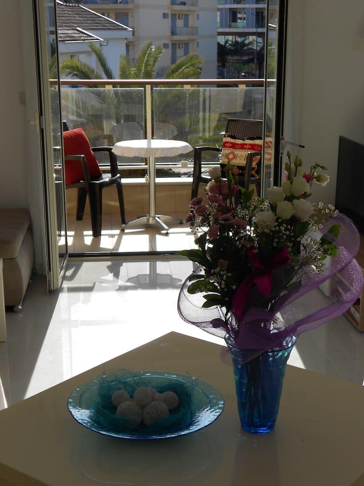 Bojković Apartments - Two-Bedroom Apartment with Balcony