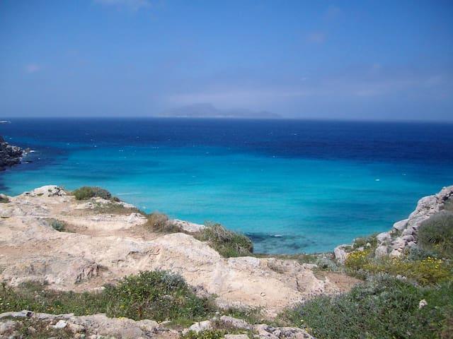 Butterfly Island - Favignana